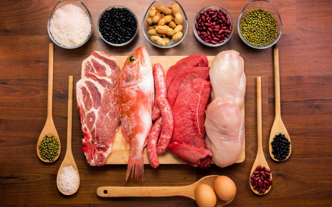 Proteínas: qual é a importância desse nutriente para o organismo?