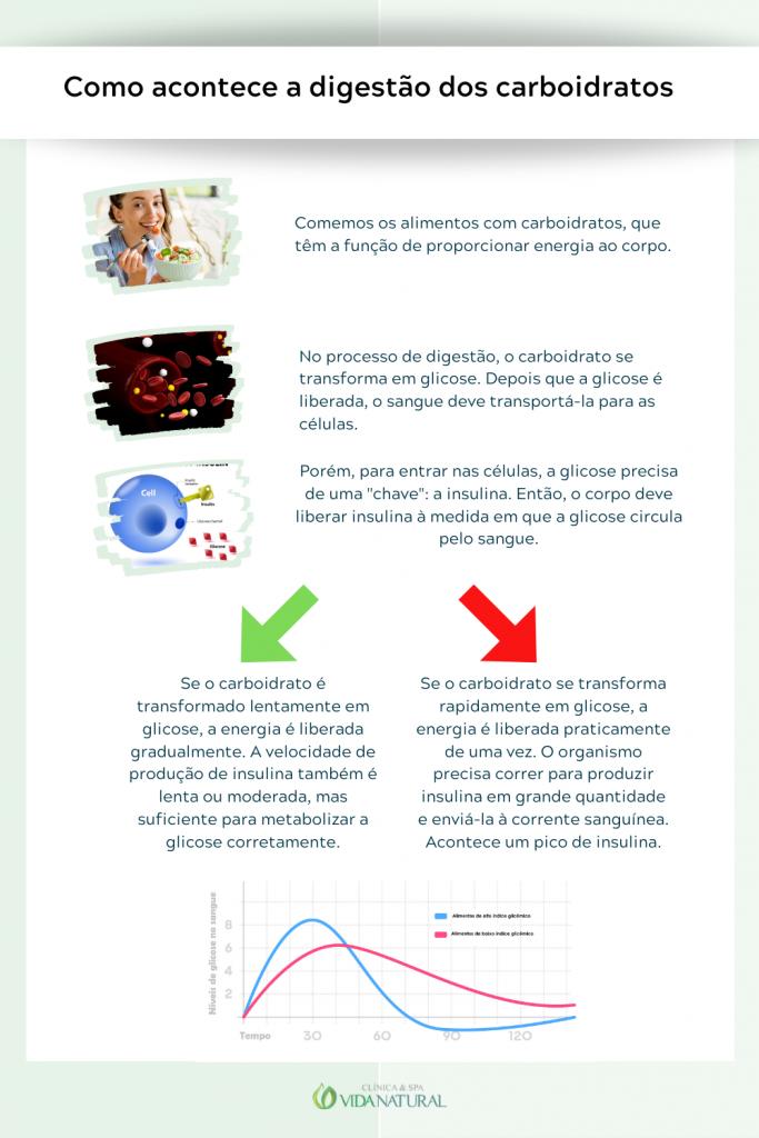 Como acontece a digestão dos carboidratos