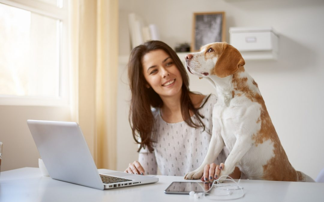 Home office saudável: como manter a saúde trabalhando em casa