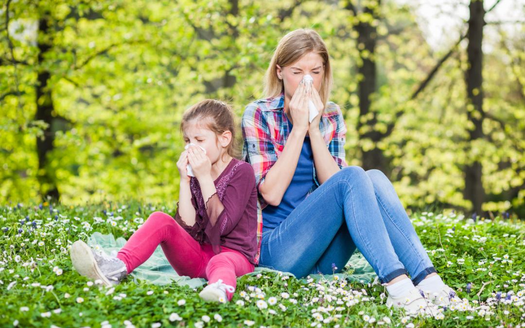 Alérgico a quê? Quais são as causas da alergia e como tratá-la