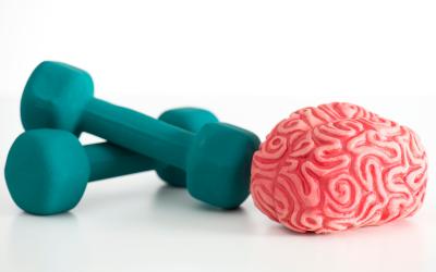 Como aumentar a produtividade: o papel do exercício físico no bom funcionamento do cérebro